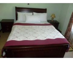 Two bed room furnished apartment for rent at Bole
