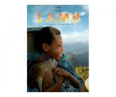 ላም (lamb)